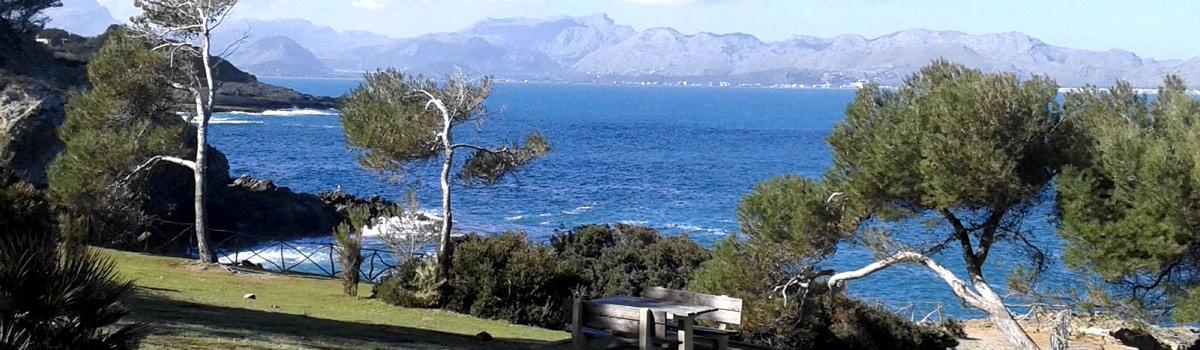 Venda su propiedad en Mallorca