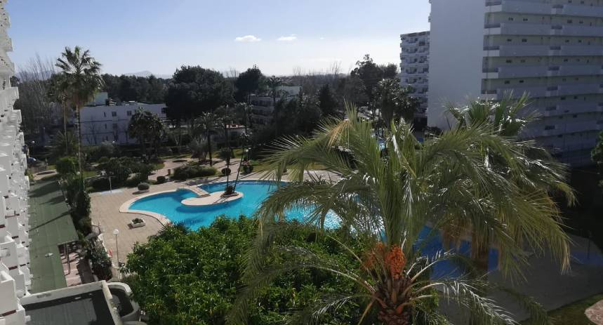 Wohnung kaufen Siesta 1, Alcudia, Mallorca - Poolblick